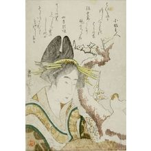 葛飾北斎: Woman and Snow Cock, with poems by Yomo no Utagaki (Magao) and an associate, Edo period, 1801 - ハーバード大学
