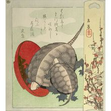 屋島岳亭: Turtles and Sake Cup, Edo period, circa 1827-1829 - ハーバード大学