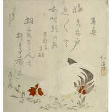 Totoya Hokkei: ROOSTER AND HEN - Harvard Art Museum