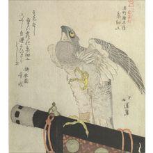 Totoya Hokkei: KOKUCHO KARAKIYA ITO ZAIKO, A FALCON ON PERCH. - Harvard Art Museum