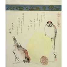 Totoya Hokkei: Sparrows, Basket and Pine Cone, from the series A Collection of Thirty-Six Birds and Animals (Sanjûroku tori zukushi), Edo period, circa 1825 - Harvard Art Museum