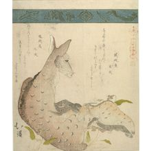 魚屋北渓: Doe and Fawn, from the series A Collection of Thirty-Six Birds and Animals (Sanjûroku tori zukushi), Edo period, circa 1825 - ハーバード大学