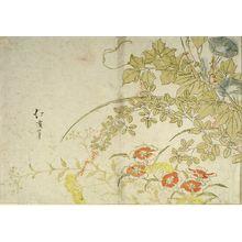 魚屋北渓: Autumn Flowers - ハーバード大学