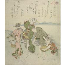 魚屋北渓: Shell Hunting, from the series A Set of Shells (Kaizukushi), Edo period, 1821 - ハーバード大学