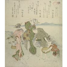 Totoya Hokkei: Shell Hunting, from the series A Set of Shells (Kaizukushi), Edo period, 1821 - Harvard Art Museum