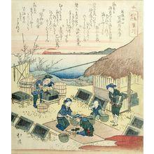 Totoya Hokkei: Hamagawa, from the series Pilgrimages to Enoshima - Harvard Art Museum