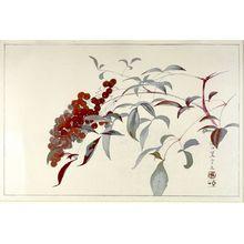 Tsuchiya Rakuzan: Branch with Berries - ハーバード大学