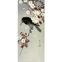 Hôtei: Crow on a Cherry Branch - Harvard Art Museum
