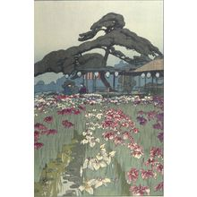Yoshida Hiroshi: Iris Garden at Horikiri (Horikiri no shôbu), from the series Twelve Scenes of Tokyo (Tokyo jûnidai), Shôwa period, dated 1928 - Harvard Art Museum