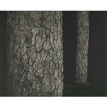 Tanaka Ryôhei: Tree Trunks, Shôwa period, - ハーバード大学