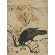 Isoda Koryusai: Crow and Heron, Mid Edo period, circa 1772 - Harvard Art Museum