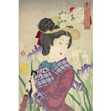 Tsukioka Yoshitoshi: Strolling: the Appearance of an Upper-Class Wife of the Meiji Era (Sanpogashitasô Meiji nenkan saikun no fûzoku), from the series Thirty-Two Aspects of Women, Meiji period, datable to 1888 - Harvard Art Museum