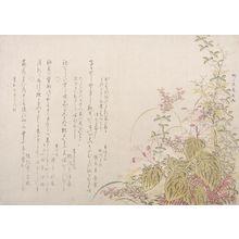 柳々居辰斎: Autumn Flowers, Edo period, dated 1803 - ハーバード大学
