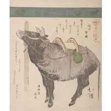 Totoya Hokkei: Ox, from the series A Collection of Thirty-Six Birds and Animals (Sanjûroku tori zukushi), Edo period, circa 1825 - Harvard Art Museum