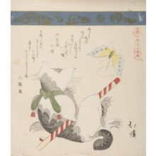 魚屋北渓: Cat and Butterfly, from the series A Collection of Thirty-Six Birds and Animals (Sanjûroku tori zukushi), Edo period, circa 1825 - ハーバード大学