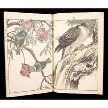 無款: Flowers and Birds of Keinen (Keinen kacho gafu) - ハーバード大学