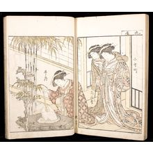 Kitao Shigemasa: A Comparison of Beauties of the Green Houses: A Mirror of Their Lovely Forms (Seirô bijin awase sugata kagami) Volume One, Edo period, published 1776 - Harvard Art Museum