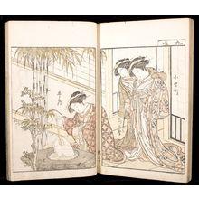 北尾重政: A Comparison of Beauties of the Green Houses: A Mirror of Their Lovely Forms (Seirô bijin awase sugata kagami) Volume One, Edo period, published 1776 - ハーバード大学