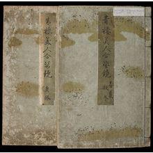 北尾重政: A Comparison of Beauties of the Green Houses: A Mirror of Their Lovely Forms (Seirô bijin awase sugata kagami) in 2 volumes, Edo period, published 1776 - ハーバード大学