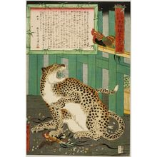 Kawanabe Kyosai: True Picture of a Live Wild Tiger, Late Edo period, sixth month of 1860 - Harvard Art Museum
