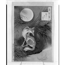 月岡芳年: Moon at Musashi Plain (Musashino no tsuki), from the series One Hundred Aspects of the Moon (Tsuki hyaku sugata), Meiji period, 1892 (4th month) - ハーバード大学