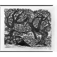 松原直子: Autumn Weaving, Shôwa period, - ハーバード大学