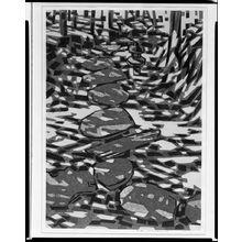 橋本興家: Katsura (Shôkei), Shôwa period, dated 1965 - ハーバード大学
