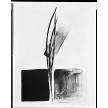 Shinoda Tôkô: Sprout D, Shôwa period, - ハーバード大学