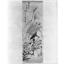 Utagawa Hiroshige: A CRANE AMONGST GOLDEN ROD AND PAMPAS GRASS - Harvard Art Museum