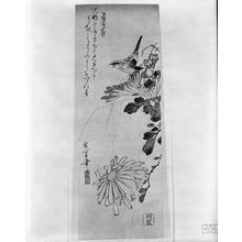 Utagawa Hiroshige: CANARY AND CHRYSANTHEMUN - Harvard Art Museum