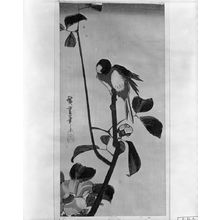 Utagawa Hiroshige: CAMELLIA AND LOVE BIRD - Harvard Art Museum