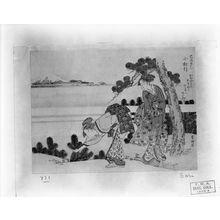 Tawaraya Sôri: Picking Young Pine Trees (in the Year of the Snake, 1797), Edo period, 1797 - ハーバード大学