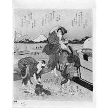 Katsushika Taito: Three Women Gathering Clams at Enoshima, with poems by Bunsôsai Matsutoshi (Shônen), Fumimado Takeo, and Bunsôan Hirotaka (Kôyô), Edo period, circa early 1830s - ハーバード大学