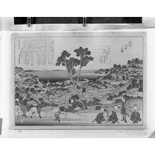 Katsushika Hokusai: SURVEYING A CONTINENT - Harvard Art Museum
