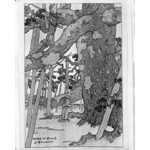 伊東深水: Pine at Karasaki, from the series Eight Views of Lake Biwa (ômi hakkei), Taishô period, dated 1918 - ハーバード大学