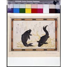 Kubo Shunman: Two Black Carp, Sketch of Panel Painting at the Shinobazu Shrine (Shinobazu tennyo-gû hengaku utsushi), with poems by Inakojonin and associates, Edo period, circa 1808 - Harvard Art Museum