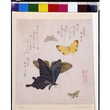 窪俊満: Two Large and Three Small Butterflies with text beginning