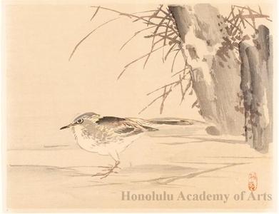 幸野楳嶺: Birds and Reeds (descriptive title) - ホノルル美術館