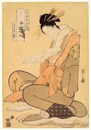 Hosoda Eishi: The Courtesan Komurasaki of Kadotamaya - Honolulu Museum of Art