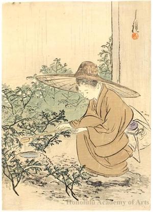 尾形月耕: Opening the Teahouse - ホノルル美術館