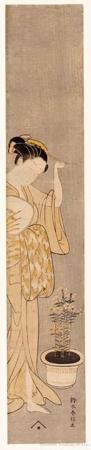 Suzuki Harunobu: Woman With Pot of Dianthus - Honolulu Museum of Art