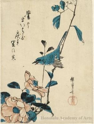 歌川広重: Nightingale and Hibiscus - ホノルル美術館
