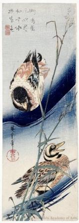 歌川広重: Reed and Wild Ducks - ホノルル美術館