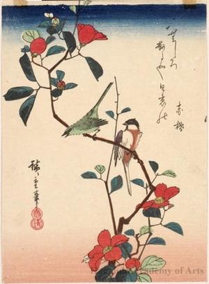Utagawa Hiroshige: Birds and Camellia - Honolulu Museum of Art