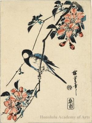 Utagawa Hiroshige: blue bird on cherry blossoms - Honolulu Museum of Art