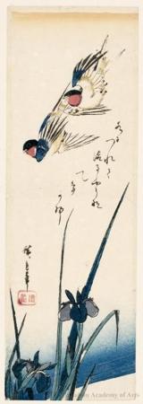 Utagawa Hiroshige: Swallows and Iris - Honolulu Museum of Art