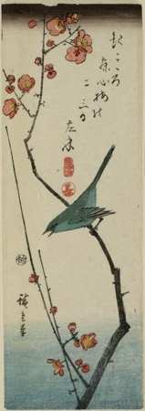 Utagawa Hiroshige: Nightingale on Plum Branch - Honolulu Museum of Art