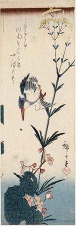 Utagawa Hiroshige: Kingfisher and Blossoms (Descriptive Title) - Honolulu Museum of Art