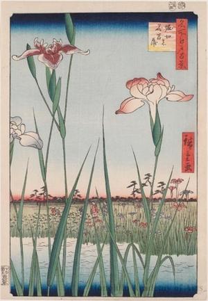 歌川広重: Horikiri Iris Garden - ホノルル美術館