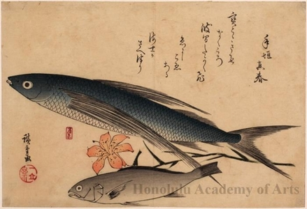 Utagawa Hiroshige: Flying Fish, Japanese Croaker & Lily - Honolulu Museum of Art